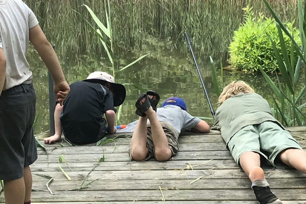 Slider 3 - Summer Camps